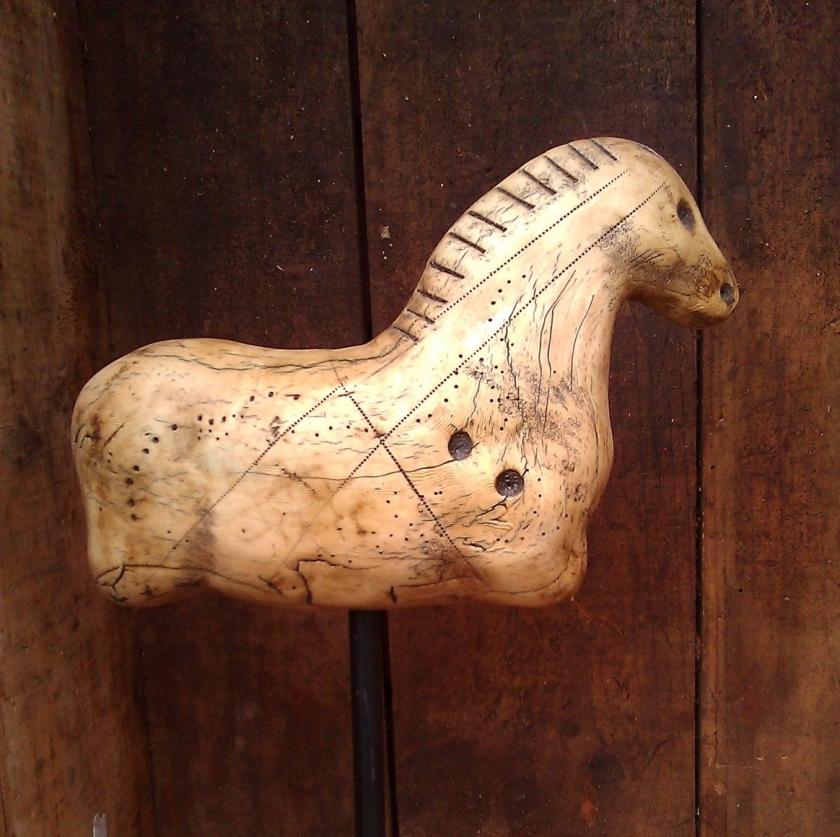 Horse in box