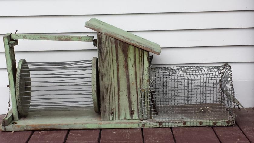 Antique squirrel cage. Nope, I'm not using it. Yet. Beware, squirrels!!